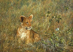 Simon Combes-Lion Cub and Butterfly SMALLWORK EDITION ON