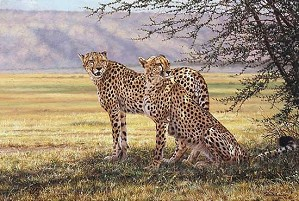 Simon Combes-Imminent Pursuit, Limited Edition Print
