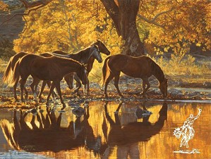 Tim  Cox-Autumns Amber Glow By Tim Cox Print  Signed & Numbered
