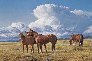 Tim  Cox-Summer Breezes By Tim Cox Giclee On Canvas  Artist Proof